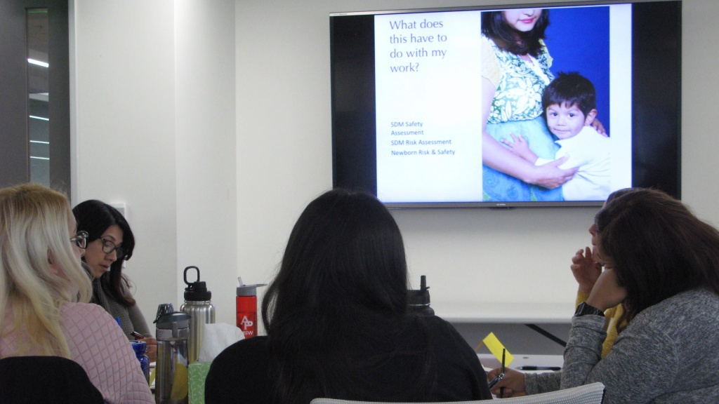 Social work interns with the Department of Children and Family Services take part in a full-day workshop on how to spot signs of depression and anxiety in new mothers.