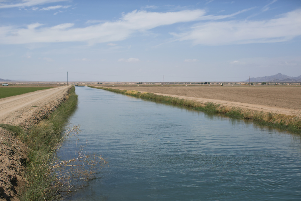 A Palo Verde irrigation district canal brings water from the nearby Colorado River to farms like Bart Fisher's in Blythe, Calif. Within the irrigation district, 29 percent of its fields are fallowed.