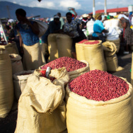 Sacks full of peanuts are displayed for sale at a market in Port-au-Prince, Haiti. Aid groups say they are dismayed by a planned influx of American-grown peanuts from a U.S. agricultural surplus that they fear could undercut a vital cash crop in the impoverished Caribbean nation.