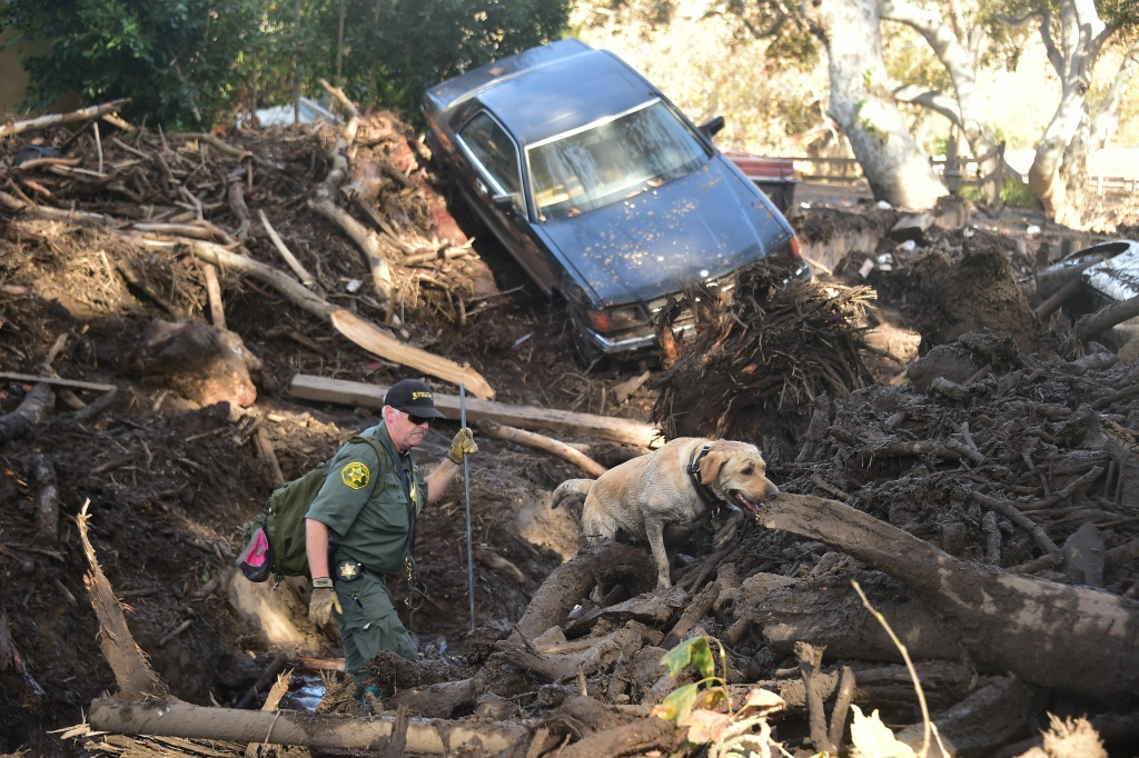 A member of a search and rescue team and his dog sift through debris looking for victims on a property in Montecito on Jan. 12, 2018.