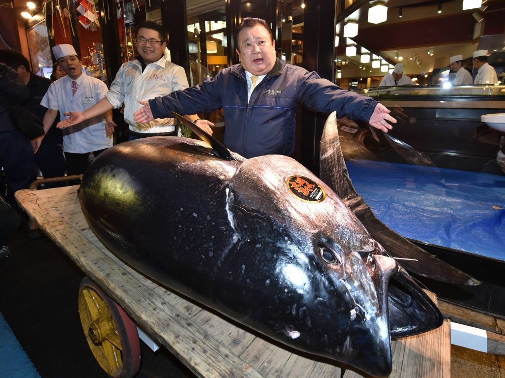 Kiyoshi Kimura, president of sushi restaurant chain Sushi Zanmai, displays a 612-pound bluefin tuna at one of his restaurants. The company he runs paid a record $3.1 million for the popular but threatened fish.