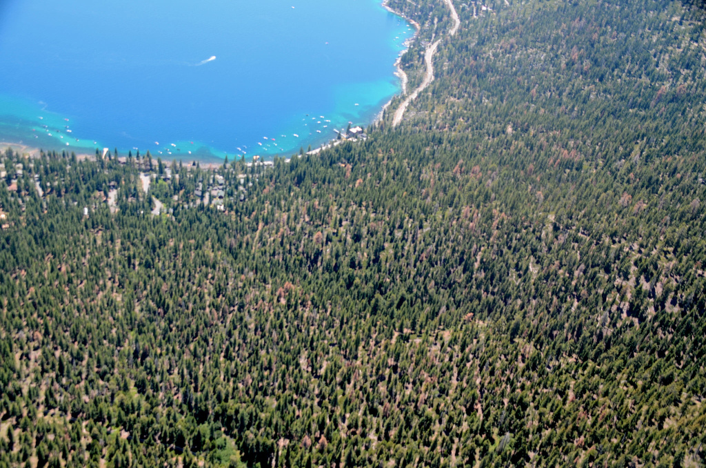 Increasing Tree Mortality Near Lake Tahoe - aerial detection survey photo taken near Lake Tahoe, July 2016.