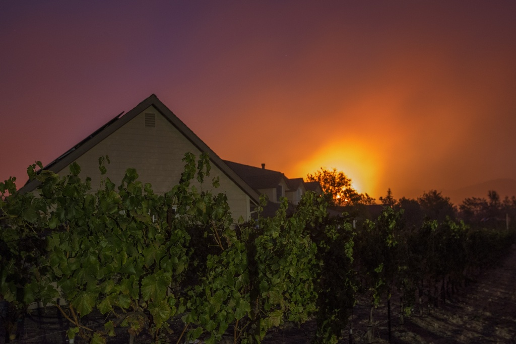 Fire approaches a vineyard in Sonoma, California in the early morning hours on October 14, 2017.