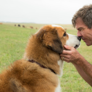 "Dennis Quaid (right) stars in ""A Dog's Purpose."""