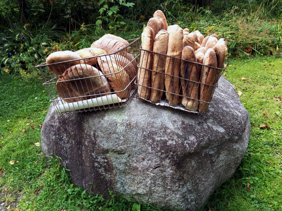 Rabin bread on a rock at the farmers market in Plainfield prior to setting up the table.
