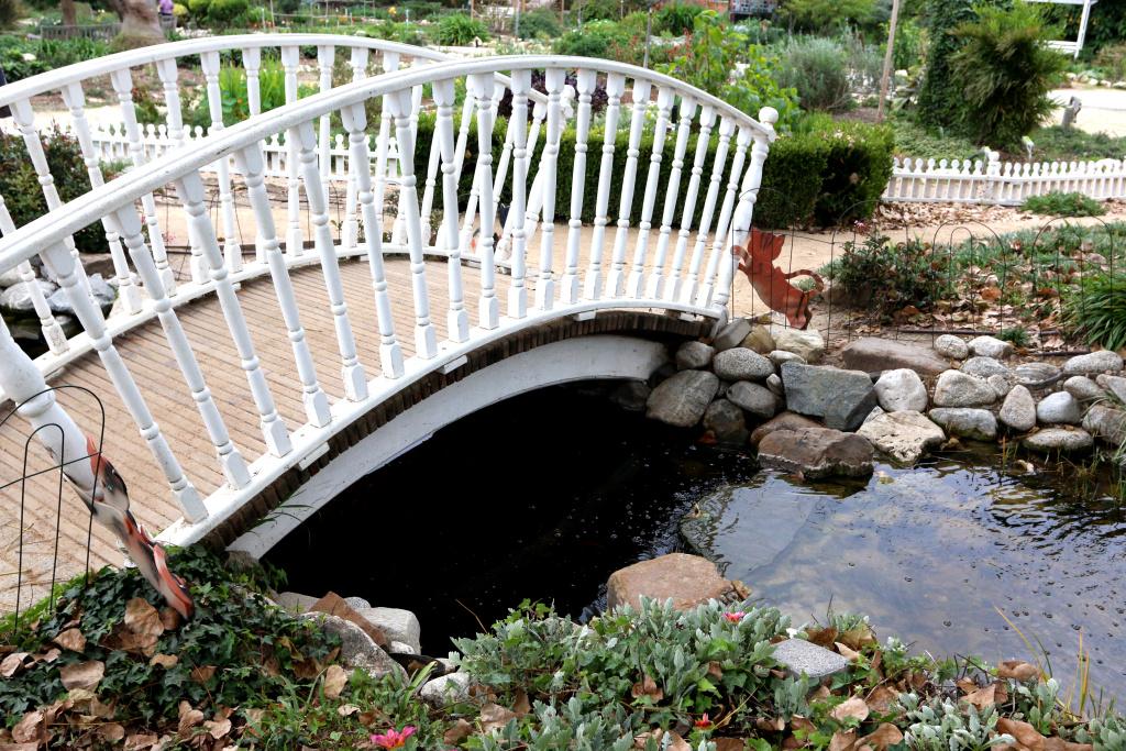 Photo: South Coast Botanic Garden