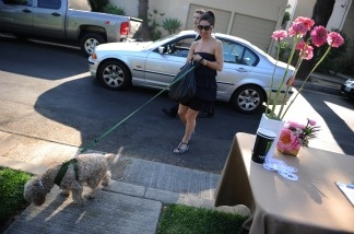 A guest leaves her car with the valet as she and her dog arrive at the Buddha Bark WonderPark luxury wellness suite at Chaz Dean Studio & Zen Garden in Los Angeles.