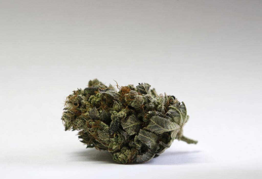 A marijuana bud is seen at a medical marijuana facility in Unity, Maine.
