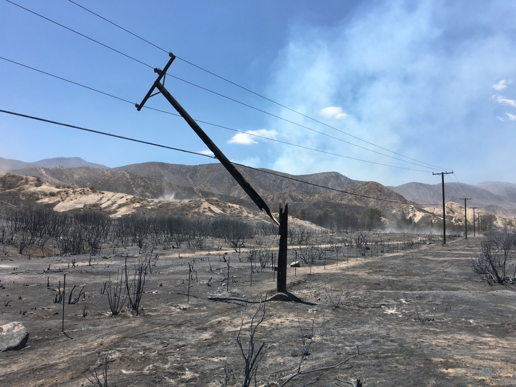 A snapped telephone pole in the aftermath of the Blue Cut Fire that burned tens of thousands of acres in San Bernardino County.