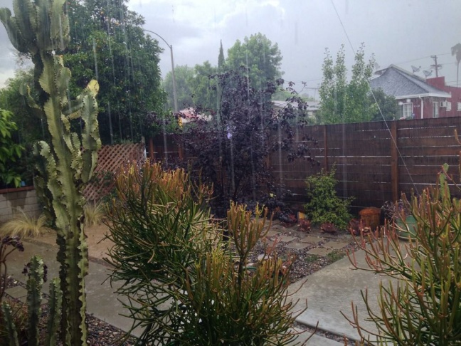 Afternoon rain in Glendale on Saturday, July 18, 2015.