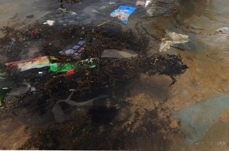 Trash is seen floating in water on the south side of Hong Kong.