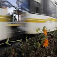 LA Rail