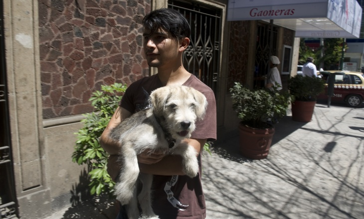 A young man holds his dog after leaving