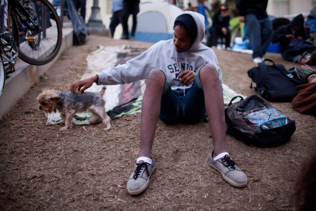 Could a grassroots #OccupyLA uproot City Hall's grass?