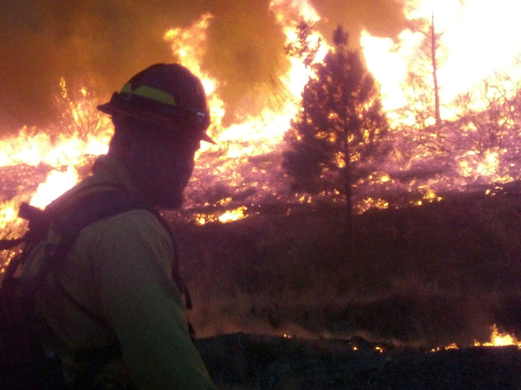 In this photo released by the U.S. Forest Service, firefighters stand watch near the perimeter of the Elk Complex fire near Pine, Idaho, earlier this week.