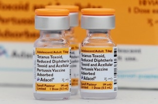 Vials of the whooping cough vaccine.