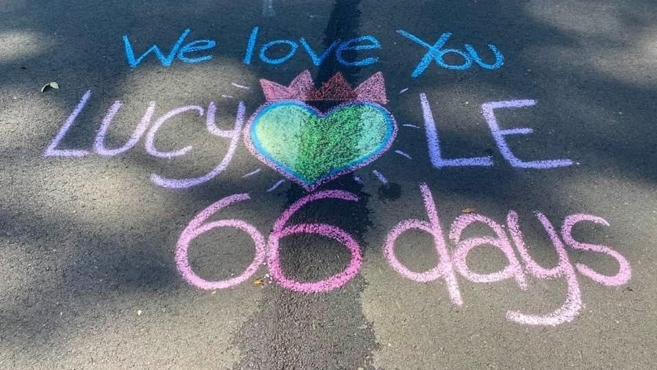 Last summer, Lucy Le was killed on a street near her Virginia home by a neighbor backing out of her driveway. Her daughter, Laura Pho, now draws a new memorial to her mother every day on the pavement where she died.