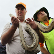Florida Trains Hunters In Python Eradication
