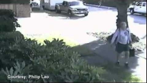 San Marino Mayor Dennis Kneier caught on video throwing dog poop on his neighbor's yard.