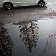 Los Angeles February Rain