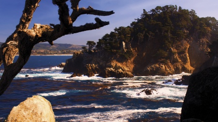 Point Lobos State Natural Preserve Frame from PBS documentary – California Forever.