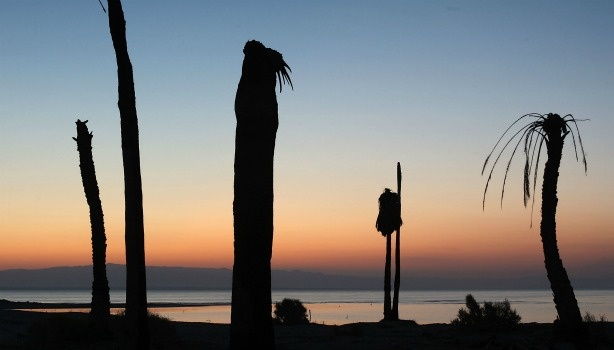 SALTON CITY, CA - JULY 7: Dead palm trees stand at a former yacht club on the shore of the Salton Sea, the biggest lake in California, which has dried up and refilled numerous times, on July 7, 2011 in Salton City, California.