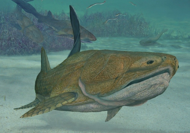 The newly described armoured fish showed in this reconstruction lived 419 million years ago but already had the bony jaw seen in modern fish and most other vertebrates.
