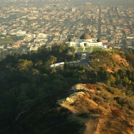 Plans For Griffith Park Fire Recovery Sparks Controversy