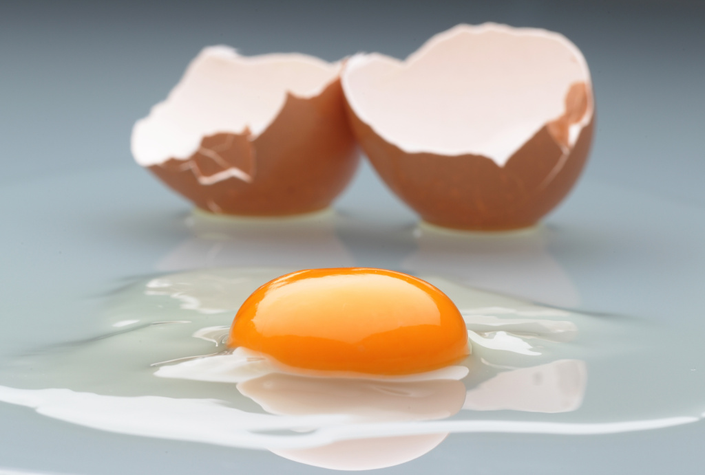 In this photo illustration an egg yolk and its shell are pictured on January 5, 2011 in Berlin, Germany.