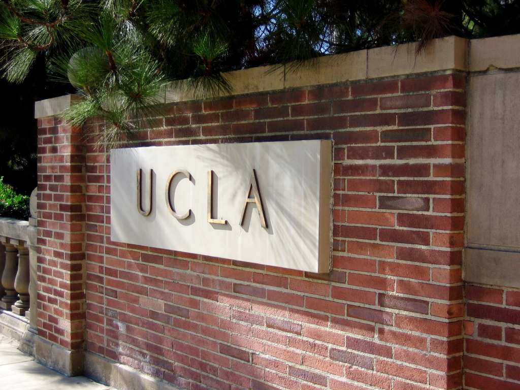 Faculty members at the University of California, Los Angeles have voted to require future undergraduates to take a course on ethnic, cultural and gender diversity.