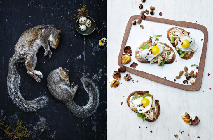 Left, grey squirrel. Right, crostini with squirrel meat, white mulberry, goat cheese, hazelnut and purslane.