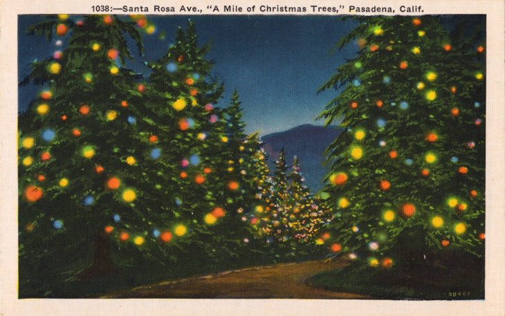 mile of christmas trees postcard