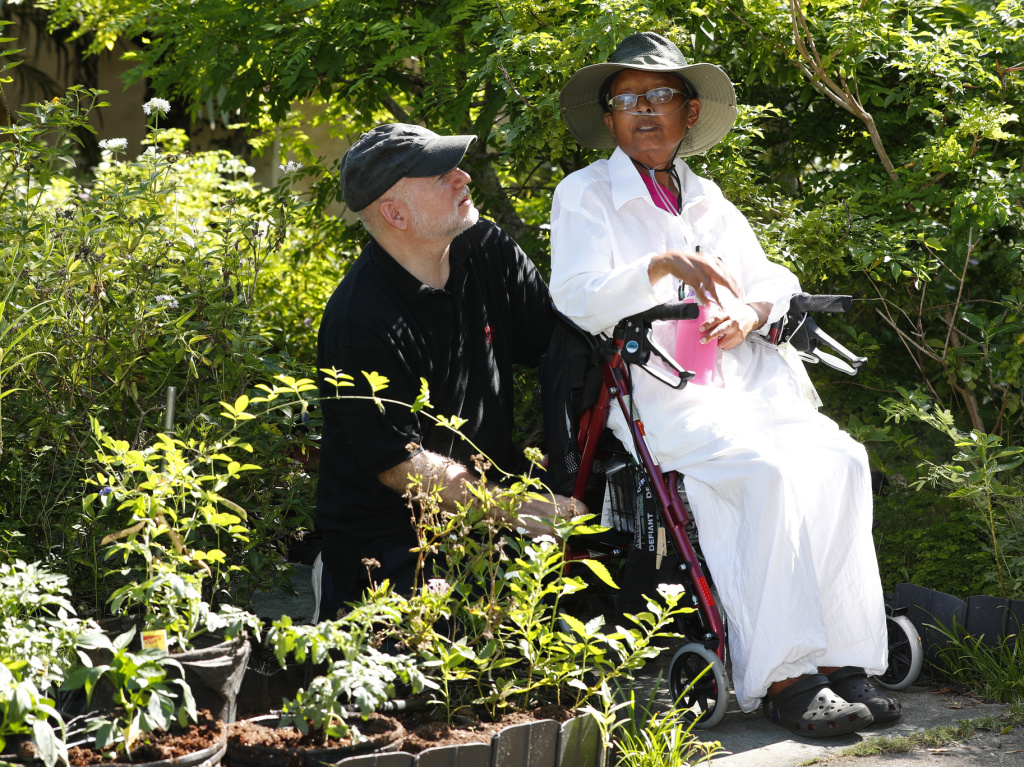 Homeowners Tom Carroll and Hermine Carroll held a ceremonial planting of vegetables in their garden on Monday. The Village of Miami Shores had prohibited front-yard gardens, but the Florida legislature passed a law that assures such gardens' legality.