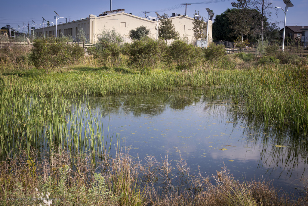 South Los Angeles Wetlands Park, LACMA's new satellite campus in South L.A.