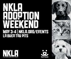 NKLA No-Kill Los Angeles Adoption Weekend