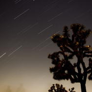 Joshua Tree Meteor Shower