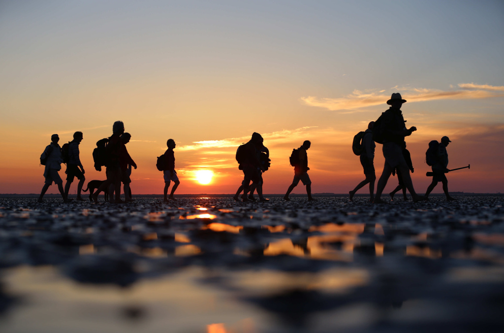 A group of hikers walks through mudflats as the sun sets before going on a moonlight walk in Dagebüll, Germany on July 22, 2013.