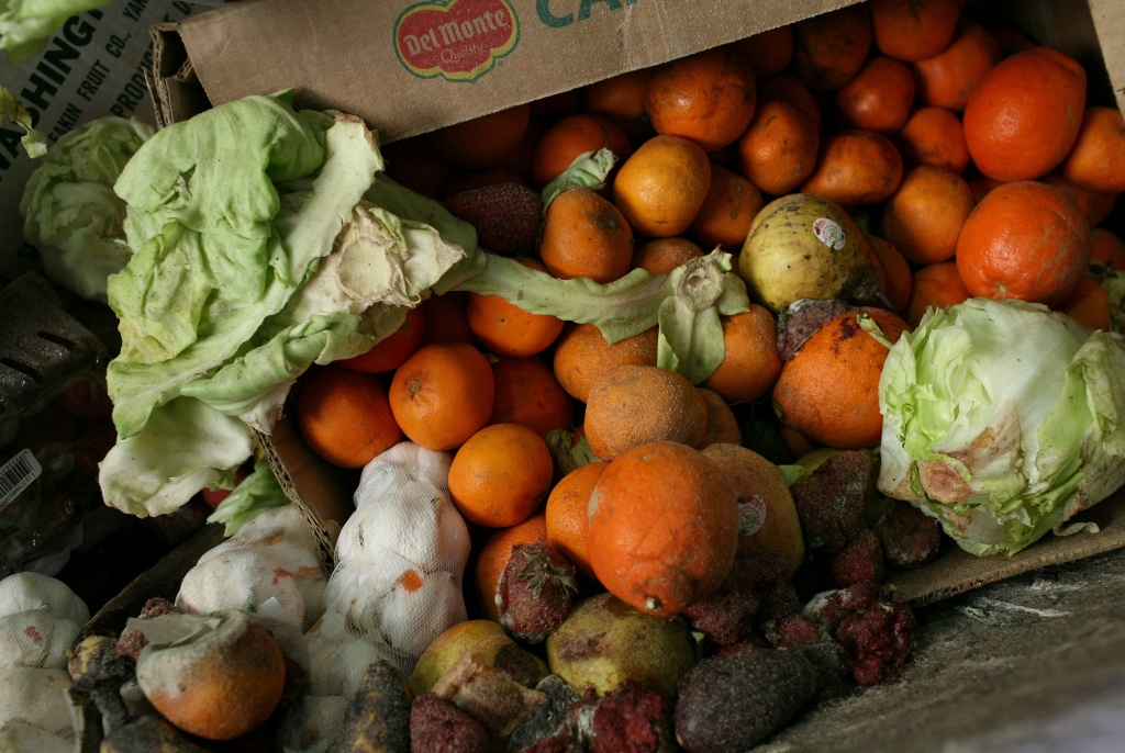 A box of food scraps that will be composted sits at the Norcal Waste Systems transfer station April 21, 2009 in San Francisco, California. Norcal Waste Systems is collecting food scraps from nearly 2,000 restaurants in San Francisco and thousands of single-family homes and are turning the scraps to make high quality, nutrient rich compost that gets sold back to Bay Area farmers. The garbage company has turned 105,000 tons of fodd scraps into 20,000 tons of compost.