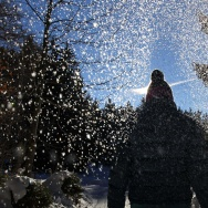 Snowflakes sprinkle down onto a woman taking a walk through a forest near Seeg, southern Germany.