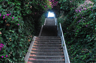 Nice AirTalk® | The Hidden Staircases Of Los Angeles | 89.3 KPCC