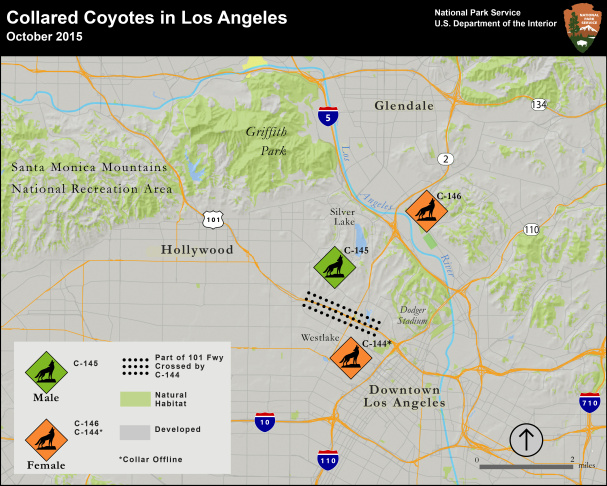 Map of colllared coyotes