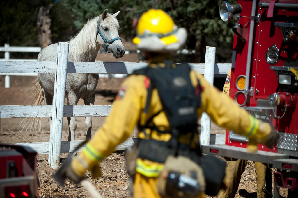 Firefighters prepare to clear burned brush behind a home with a horse ranch as the Silver Fire continues to burn in the San Jacinto Mountains near Banning, Calif. on Friday, Aug. 9.