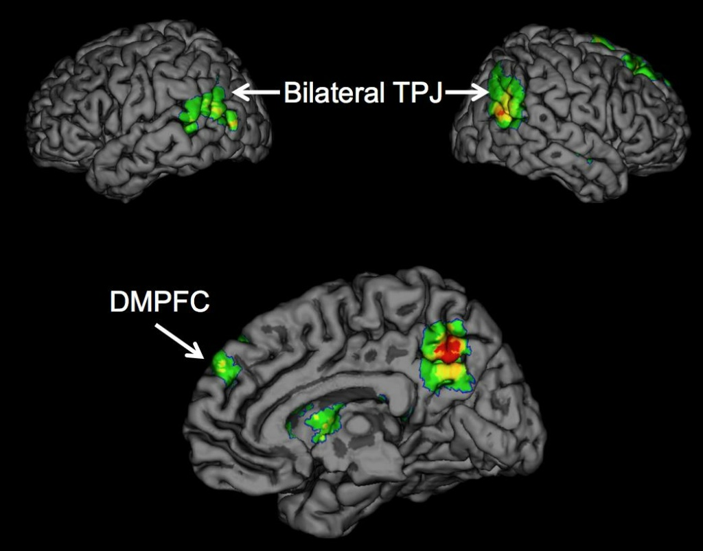 Psychologists report for the first time that the temporoparietal junction (TPJ) and dorsomedial prefrontal cortex (DMPFC) brain regions are associated with the successful spread of ideas, often called 'buzz.'