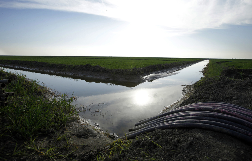 FILE - In this Feb. 25, 2016 file photo, water flows through an irrigation canal to crops near Lemoore, Calif.