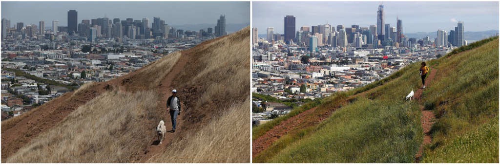 A dog walker on a dried section of Bernal Heights Park in 2014 in San Francisco (left). When Sullivan returned to the hillside this year, he was able to snap a photo of another woman walking her dog in almost the exact same spot.
