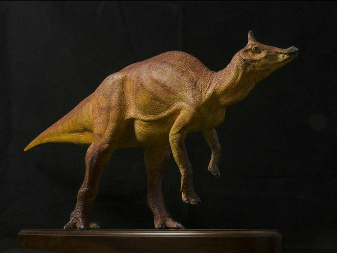 A rendering of how scientists think the Augustynolophus morrisi dinosaur looked.