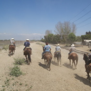 7b5c2626ee1ae Mexican cowboys hold on to their rural  vaquero  traditions in urban Los  Angeles (Photos