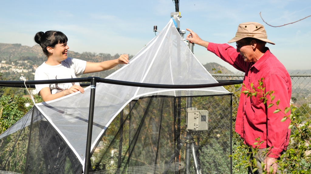 Entomologist and UNRC researcher Lisa Gonzalez checks the Malaise insect trap that is set up in Joe Hogg's backyard. Joe is a site host in the UNRC SuperProject, the world's largest biodiversity inventory that relies on volunteers across Southern California to collect data.