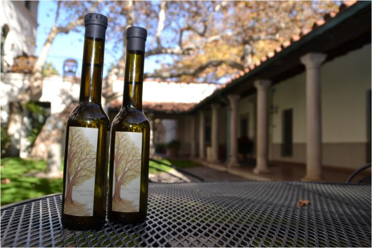 Bottles of