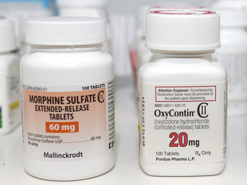 Morphine and oxycodone (the active ingredient in Oxycontin) are strong narcotic pain relievers on their own.